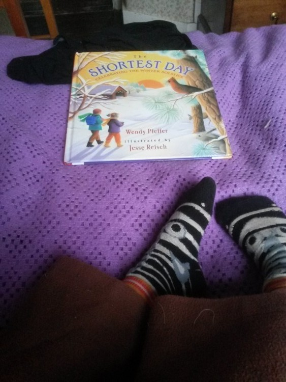 Book 'The Shortest Day' and zebra socks on a purple blanket